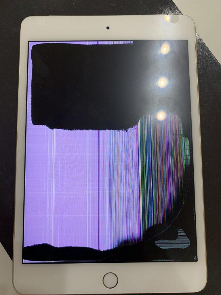 iPadmini4 液晶 ノイズ 修理前
